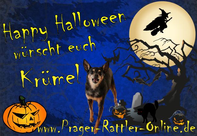 An den Beitrag angehängtes Bild: http://daten.prager-rattler-online.de/bilder/Halloweengruss2013.jpg